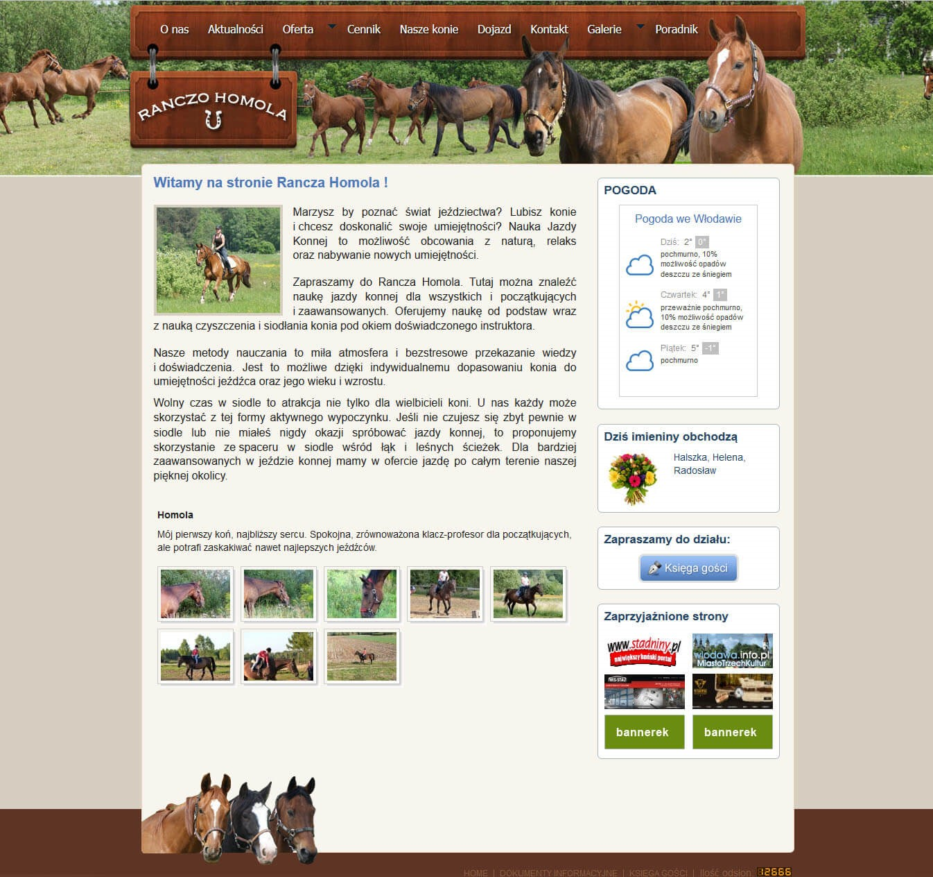Hest ranch<div style='clear:both;width:100%;height:0px;'></div><span class='cat'>WordPress</span>